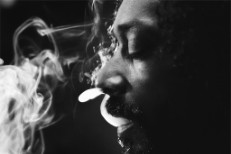 "Snoop Lion – ""No Regrets"" (Feat. T.I. & Amber Coffman)"