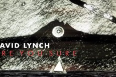 "David Lynch - ""Are You Sure?"""