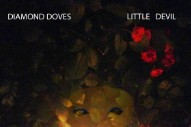 "Diamond Doves – ""Little Devil"""