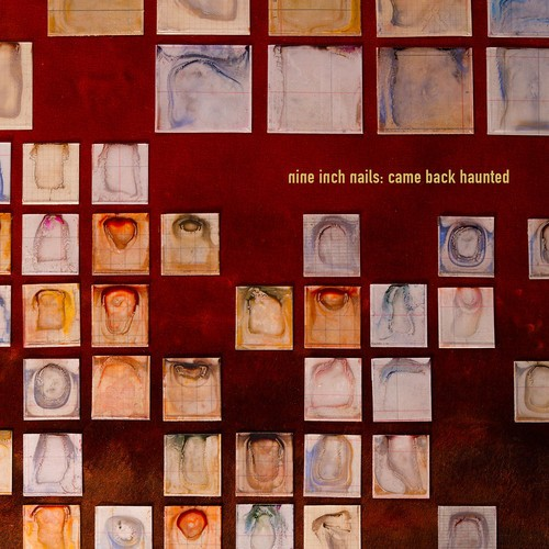 "Nine Inch Nails - ""Came Back Haunted"""