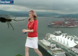 Weatherwoman Reacts Appropriately To Massive Spider, Is Mocked