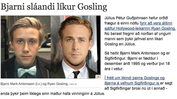 gosling_iceland