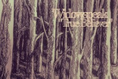 Widowspeak - True Believer