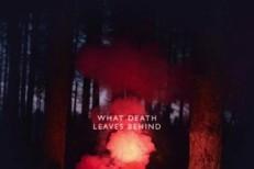"""Los Campesinos! – """"What Death Leaves Behind"""""""