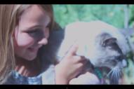 "Batwings Catwings – ""September"" Video"