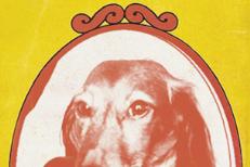 The Weiner Dog Comp II