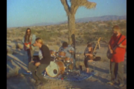 """Milk Music – """"No, Nothing, My Shelter"""" Video"""
