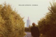 "Yellow Ostrich – ""Shades"""