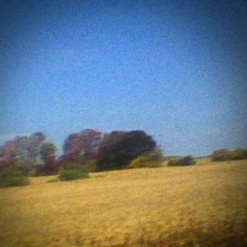 """Sun Kil Moon – """"I Watched The Film The Song Remains The Same"""""""