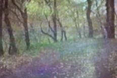"Bibio - ""Dye The Water Green"" video"