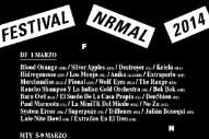Festival NRMAL 2014 Lineup