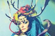 """Wild Throne – """"Blood Maker"""" (Stereogum Premiere)"""
