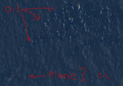 Courtney Plane Diagram