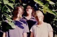 Yo La Tengo, Decemberists, Ginuwine To Appear With Jeff Tweedy On <em>Parks &#038; Rec</em>