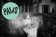"PAWS – ""Owls Talons Clenching My Heart"" (Stereogum Premiere)"