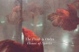 """The Fresh & Onlys – """"Who Let the Devil"""""""