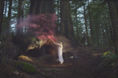 """Tycho – """"See"""" Video"""