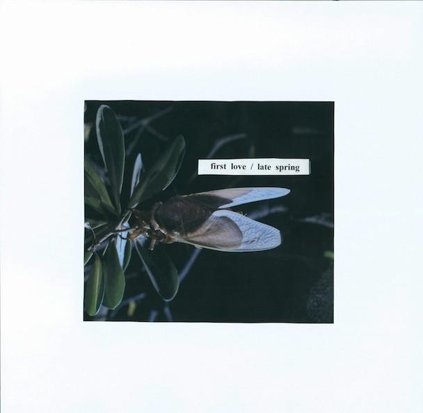 "Mitski - ""First Love/Late Spring"" (Stereogum Premiere)"