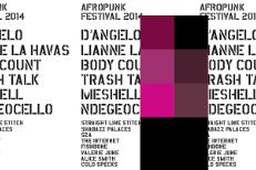 Afropunk 2014