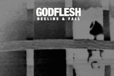 Godflesh - Decline And Fall