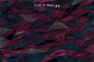 "Field Mouse – ""Everyone But You"" (Stereogum Premiere)"