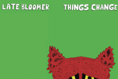 "Late Bloomer - ""Mirror"" (Stereogum Premiere)"
