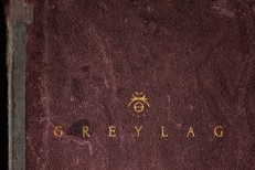 Greylag album cover