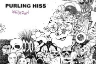 "Purling Hiss – ""Learning Slowly"""