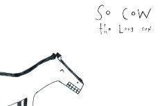So Cow - The Long Con