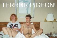 """Terror Pigeon - """"Girl!"""""""