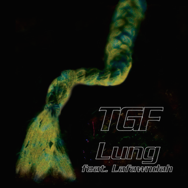 "Teengirl Fantasy - ""Lung"" (Feat. Lafawndah)"