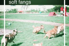 Soft Fangs -