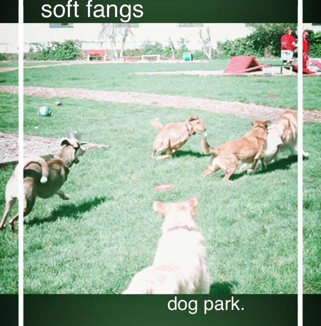 Soft Fangs -