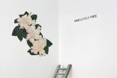 Absolutely Free - Absolutely Free.