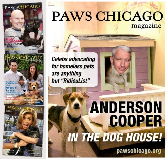 Anderson Cooper In The Doghouse