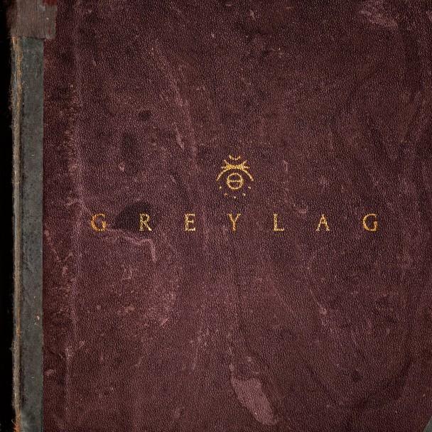 Stream Greylag Greylag