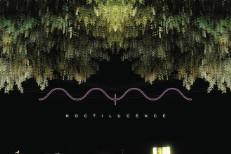 Mark McGuire - Noctilucence