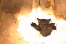 Watch Run The Jewels&#8217; Ridiculous Trailer For <em>Meow The Jewels</em>