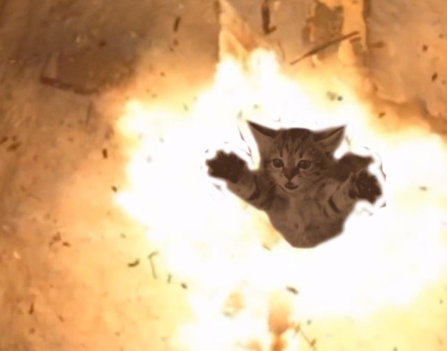 Meow The Jewels trailer