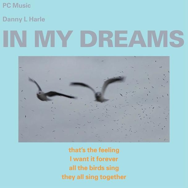 "Danny L Harle - ""In My Dreams"""
