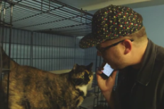 Watch El-P Audition Cats For <em>Meow The Jewels</em>