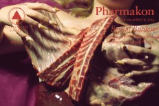 Stream Pharmakon Bestial Burden