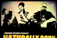 "Big Noyd, Large Pro & Kool G Rap – ""Naturally Born (Cookin' Soul Remix)"" (Stereogum Premiere)"