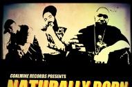 "Big Noyd, Large Pro & Kool G Rap – ""Naturally Born (Cookin' Soul Remix)"" (Stereogum Premiere)"