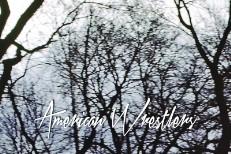 American Wrestlers -