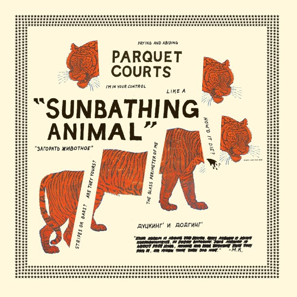 Parquet Courts - <em>Sunbathing Animal</em> (What's Your Rupture?)