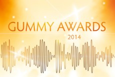 The Gummy Awards 2014
