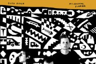 "Dick Diver – ""Waste The Alphabet"""