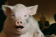 "Shabazz Palaces – ""Ham Sandwich"""