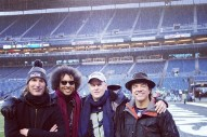 It's 2015 And Alice In Chains Played Halftime At The NFC Championship Game